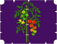 豆粒トマト1400YM.PNG